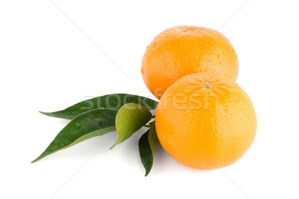 Olgun mandalina mandalina yalıtılmış beyaz meyve Stok fotoğraf © homydesign