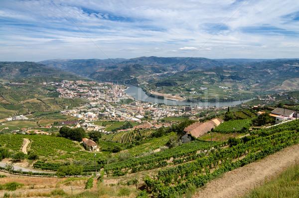 Regua, vineyars in Douro Valley Stock photo © homydesign