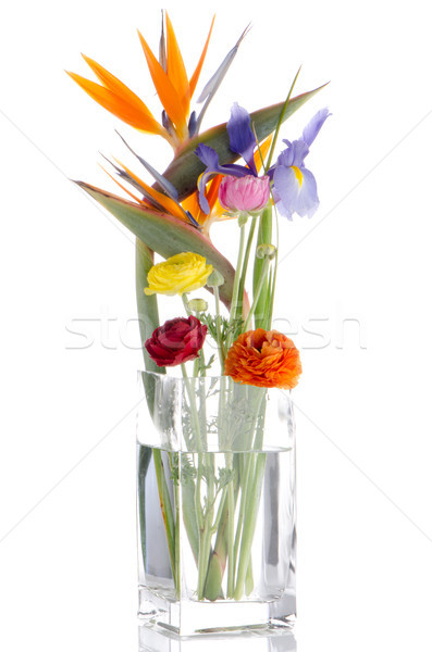 Fleurs bouquet blanche alimentaire groupe Photo stock © homydesign