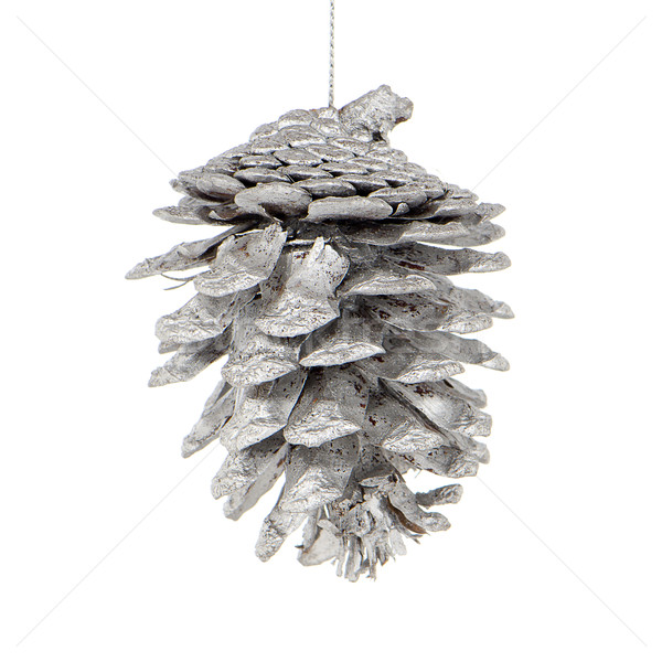 Pine cone painted with white Stock photo © homydesign
