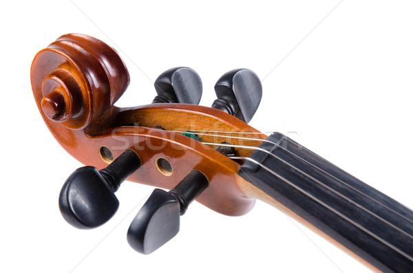 Violino isolato bianco arte concerto Foto d'archivio © homydesign