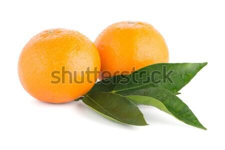 Rijp gesneden Rood grapefruit geïsoleerd witte Stockfoto © homydesign