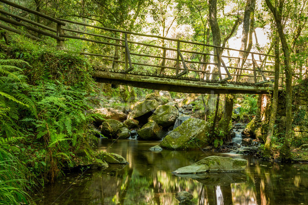 Wooden bridge near waterfall in Cabreia Portugal Stock photo © homydesign