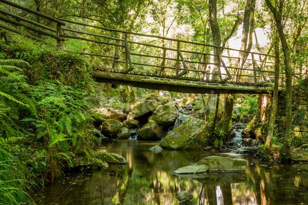 Bois pont cascade Portugal belle longue exposition Photo stock © homydesign