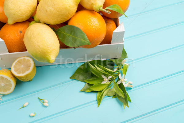 Citrus fresh fruits Stock photo © homydesign