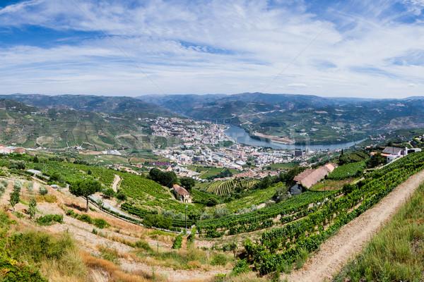Panoramic view over River Douro Stock photo © homydesign