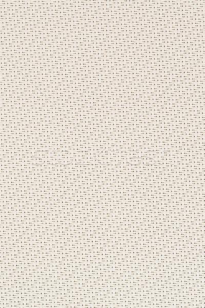 Bej tuval doku detay çerçeve Stok fotoğraf © homydesign