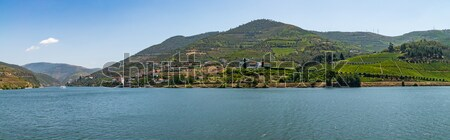 View of Douro Valley, Portugal.  Stock photo © homydesign