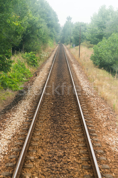 Railroad track, train point of view Stock photo © homydesign