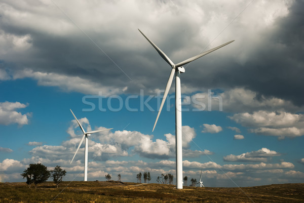 Wind turbines Stock photo © homydesign