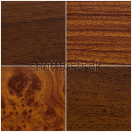 Four wood samples Stock photo © homydesign