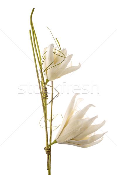 Artificial gardenia flower Stock photo © homydesign