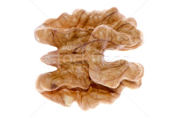 Unshelled nut Stock photo © homydesign