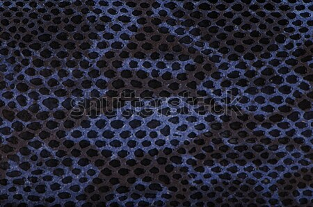 Bleu python serpent peau texture mode Photo stock © homydesign