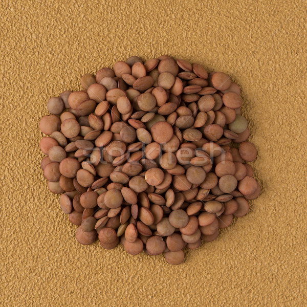 Circle of lentils Stock photo © homydesign