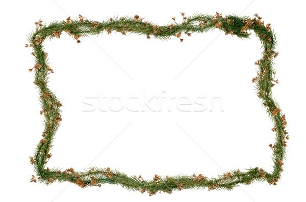 Noël cadre décoration isolé blanche Photo stock © homydesign
