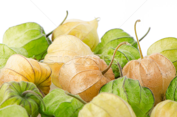 Stok fotoğraf: Meyve · turuncu · kesmek · sağlıklı · sezon · gurme
