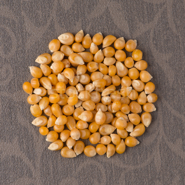 Circle of corn Stock photo © homydesign