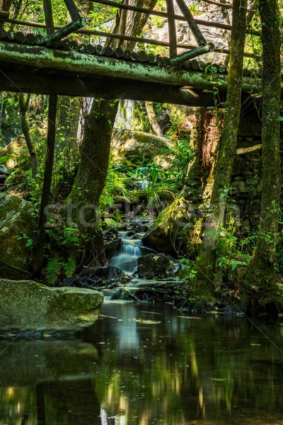 Wooden bridge near waterfall in Cabreia Portugal Stock photo © homydesign