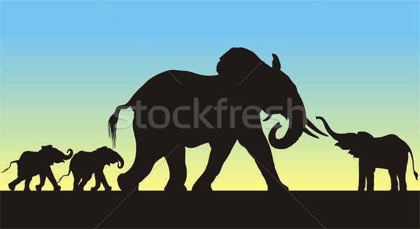 Mother and Babies Elephant Silhouettes Stock photo © HouseBrasil
