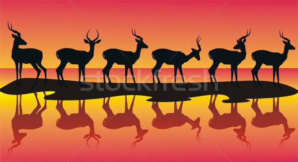 Silhouetten gedetailleerd groep natuur afrika clip Stockfoto © HouseBrasil