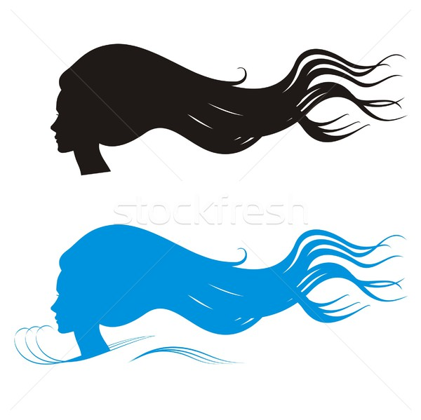 Cabelos longos beleza silhuetas silhueta mulher cabeça Foto stock © HouseBrasil