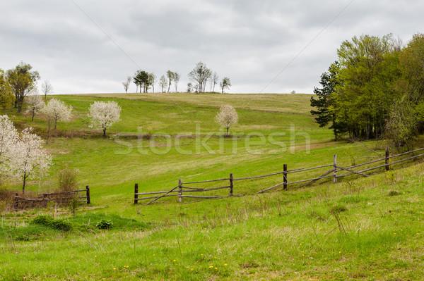 Fából készült kerítés domboldal vidéki mezőgazdasági mezők Stock fotó © hraska