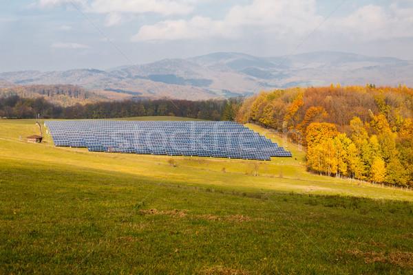 Napelemek zöld legelő ipari megújuló erőforrások Stock fotó © hraska