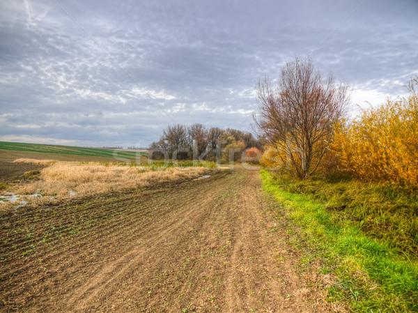 Fields and marsh Stock photo © hraska