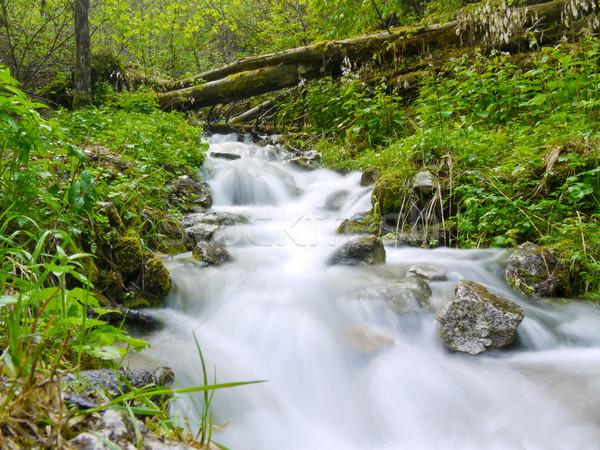 Stopped waterfall Stock photo © hraska