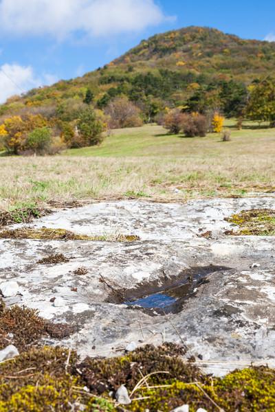 Calcário paisagem superfície montanha prado pequeno Foto stock © hraska