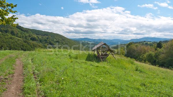 Etetés állatok fából készült felső domb felhők Stock fotó © hraska
