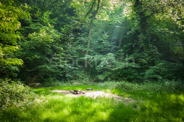 Forest camping place Stock photo © hraska