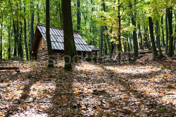 Bois hutte forêt peu chalet profonde Photo stock © hraska