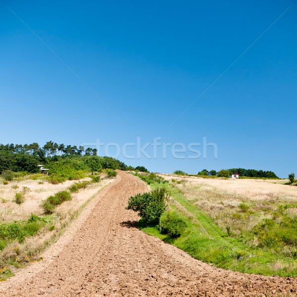 Ploughed field Stock photo © hraska