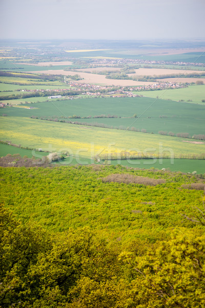 Vert champs vue printemps agricole paysage Photo stock © hraska