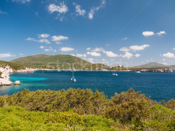Bay with anchorage ships Stock photo © hraska