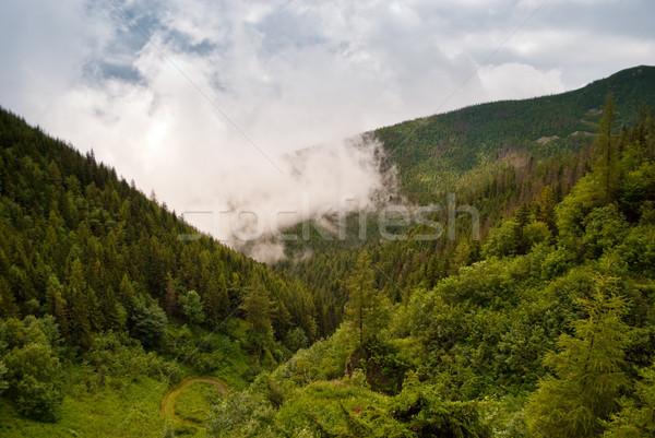 Vihar felhők nyár délután hegy fa Stock fotó © hraska