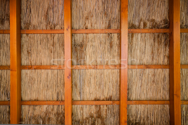 Cane shelter background Stock photo © hraska