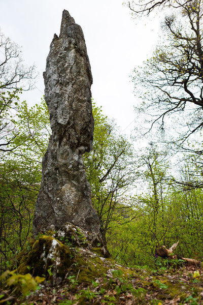 Rock pinnacle needle Stock photo © hraska