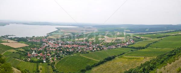 Wine region Stock photo © hraska