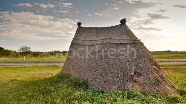 Neolithic prairie settlement  Stock photo © hraska