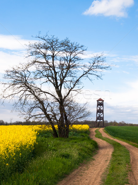 Watch tower in rural country Stock photo © hraska