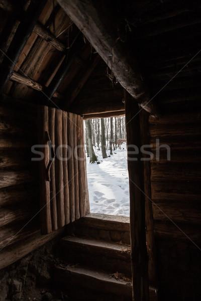 ストックフォト: 入り口 · 木製 · コテージ · オープン · フロントドア