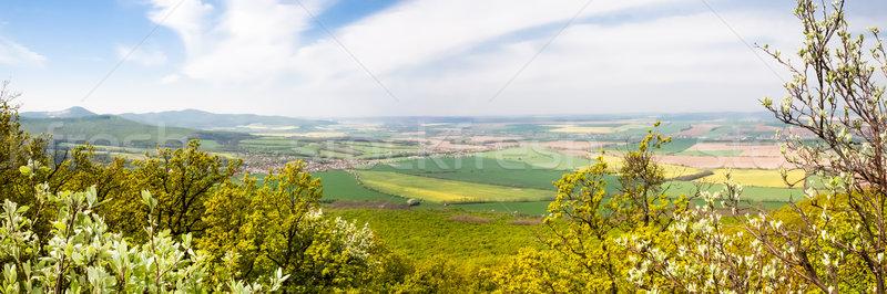 Panorama view at green fields  Stock photo © hraska