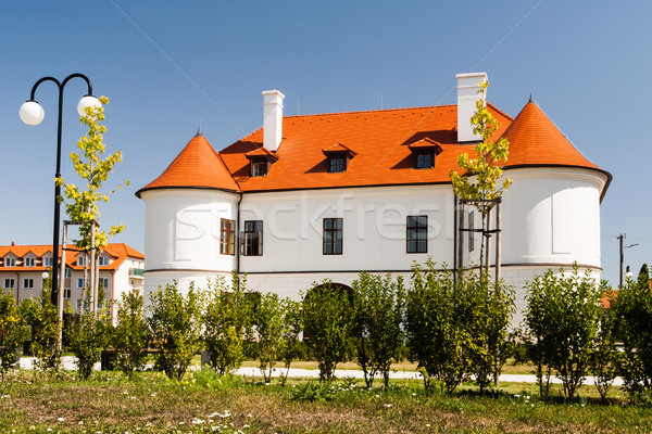 Ancient noble mansion Stock photo © hraska