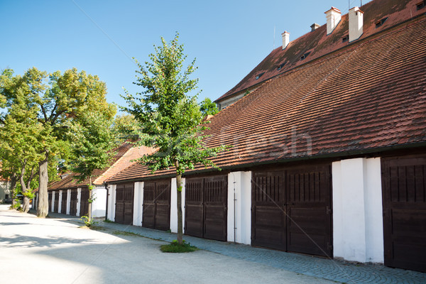 Cavallo cavalli vecchio aristocratica residenza legno Foto d'archivio © hraska