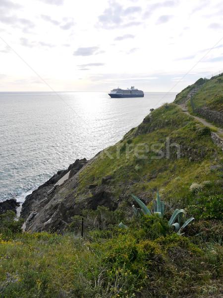 Transatlantic ship on the horizon Stock photo © hraska