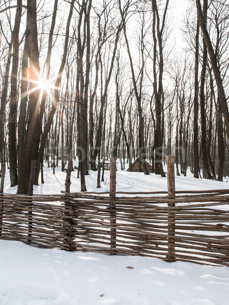 Bois hutte forêt neige couvert paysage Photo stock © hraska