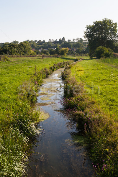 Small river in a rural environment with preserved natural vegeta Stock photo © hraska